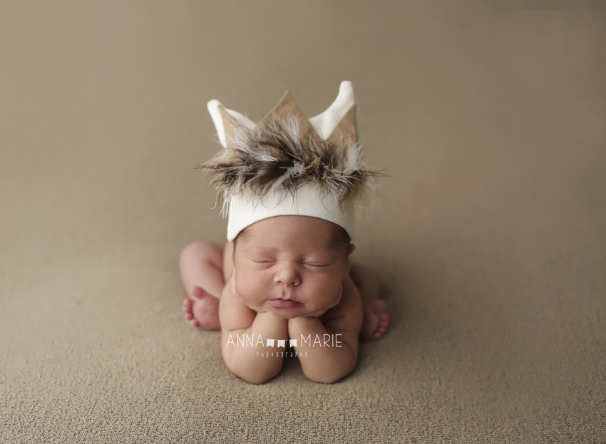 Lees summit newborn photographer kansas city newborn photographer